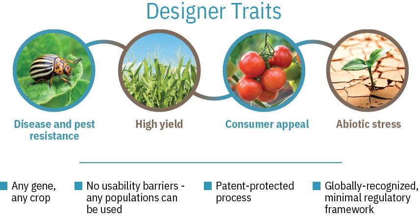 designer traits
